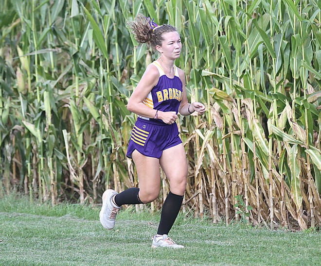 Bronson's Abby Ware finished second overall in the girl's race against Coldwater on Tuesday.
