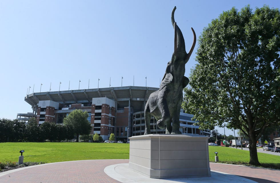 Tuska, the life-sized elephant sculpture now residing outside Bryant-Denny Stadium, will be one of the first things visitors see during this football season. [Staff Photo/Gary Cosby Jr.]