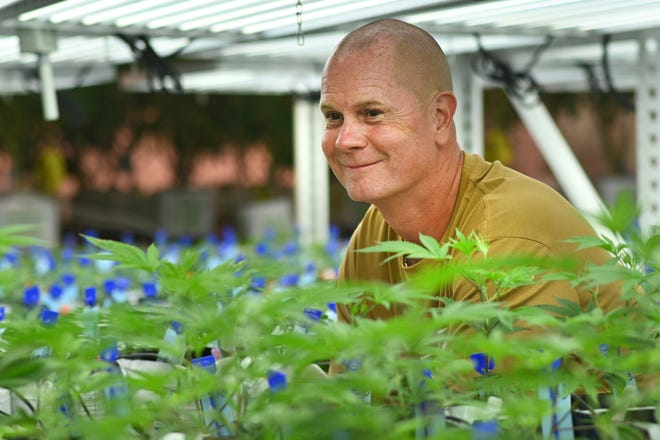 Rick Wershe in Pleasantrees Nursery in Harrison Township on Wednesday September 1st, 2021. Wershe is partnering with the company and launching its own product brand.