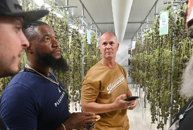 From left, Evan Williams, Jerome Crawford, Director of Legal Operations and Social Equity for cannabis company Pleasantrees, and Rick Wershe in the drying room of the company's Harrison Township facility on Wednesday, September 1, 2021.