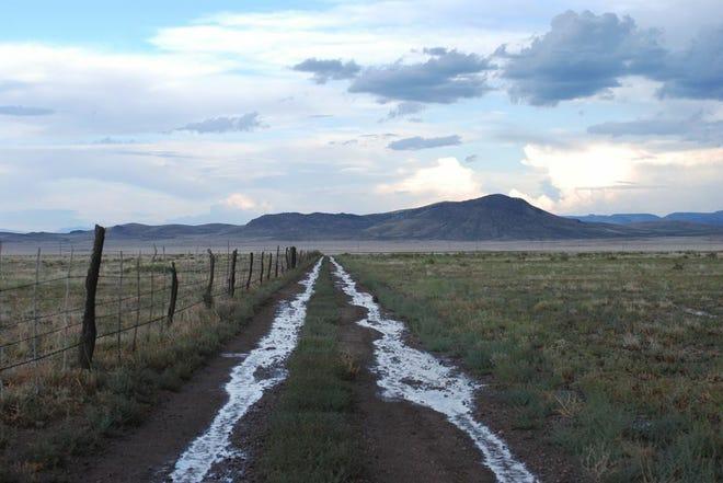 Rain road in New Mexico