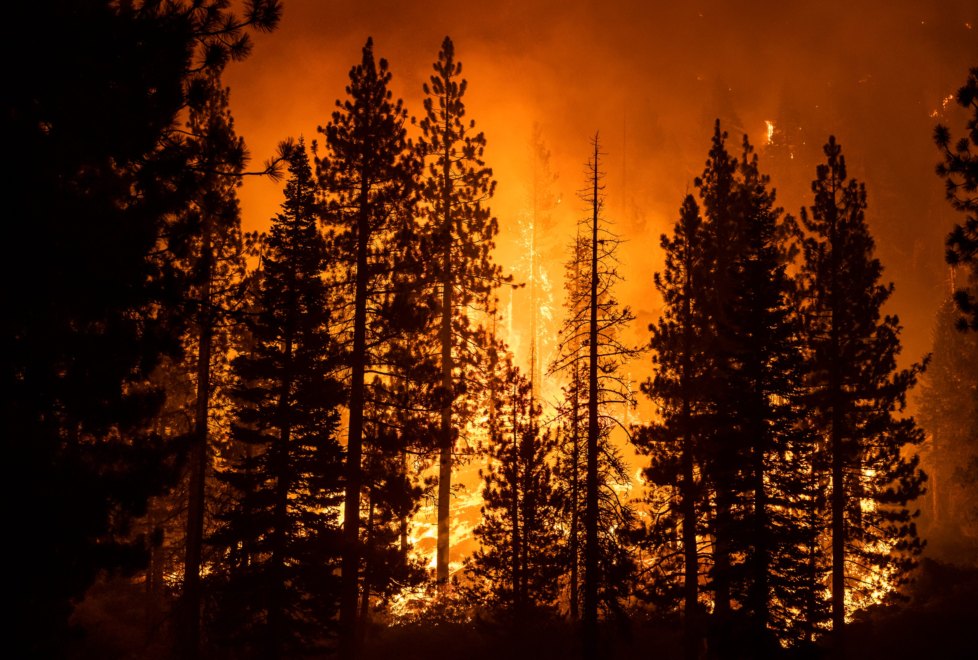 We re still not out of the woods : Improved weather conditions could aid crews fighting to saveLake Tahoe from Caldor Fire