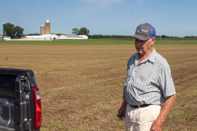 Jim Kemp stands in his neighbor's alfalfa field. The field was once knee-high and green. Then the armyworms invaded, devastating everything in four days.