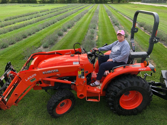 The land on Ann and Craig Schueller's farm is  flat and treeless, ideally suited for growing lavender.