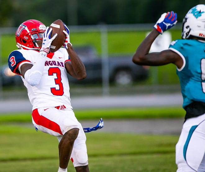 Vanguard's Tyrell Randall hauls in a pass for a touchdown in the first half Friday against the West Port Wolfpack.