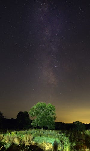 NEW BRAINTREE - The Milky Way was visible in the night sky above a tree in New Braintree on Saturday, Sept. 4, 2021. The Milky Way was visible from about 9 to 11 p.m.