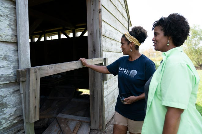 Saturday, Sept. 4, 2021 - The Whitney Plantation in Edgard, known to be a historical and educational site framing history from the perspective of the slave, sustained costly damage from Hurricane Ida. Joy Banner, director of communications at the Whitney, left, and her sister Jo Banner tour the property.