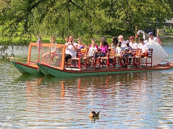 One of the swan boats sails by one of the many ducks.