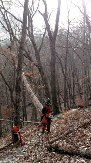 Missouri Department of Conservation invites landowners and property managers to a free workshop on chainsaw safety in Moniteau County, Oct. 8–9. Register before Oct. 6 to attend.