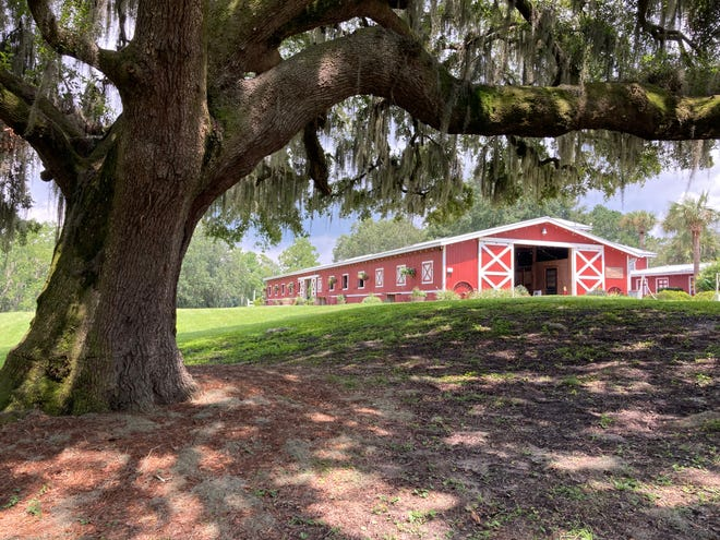 Red Gate Farms is a horseback riding destination minutes from downtown Savannah, Ga.