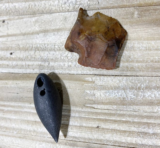 A prehistoric projectile point and another prehistoric object known as a plummet were discovered in the stomach of a 13-foot, 5-inch Mississippi alligator.