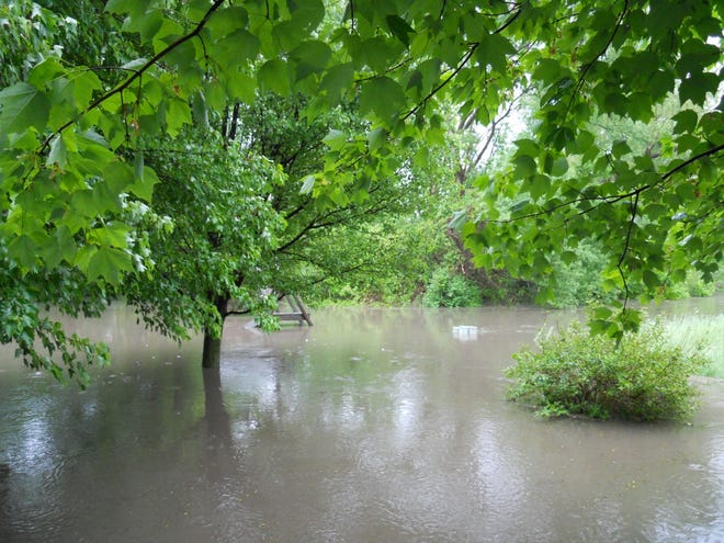 Residents who live along Manton Avenue in Plymouth Township experience severe flooding from Tonquish Creek during heavy rainstorms.