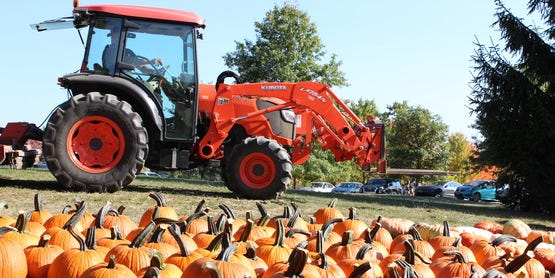 Harvest season is a great time to see all the activity on Farm Trail Weekend.
