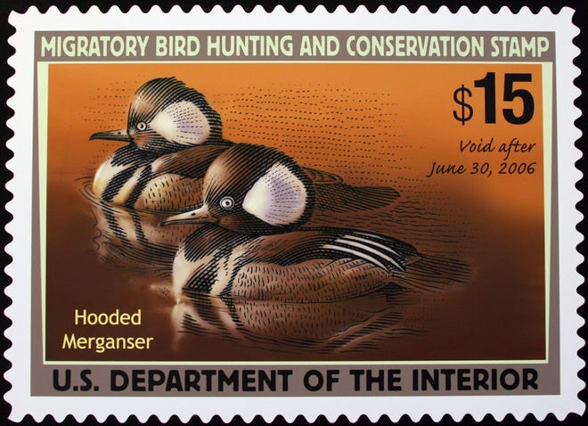 This June 30, 2005 file photo shows the 2005-2006 Federal Duck Stamp designed by Mark Anderson of Sioux Falls, S.D., displayed on Capitol Hill during the U.S. Fish and Wildlife Service's first day of sale for the 2005-2006 Federal Duck Stamp.