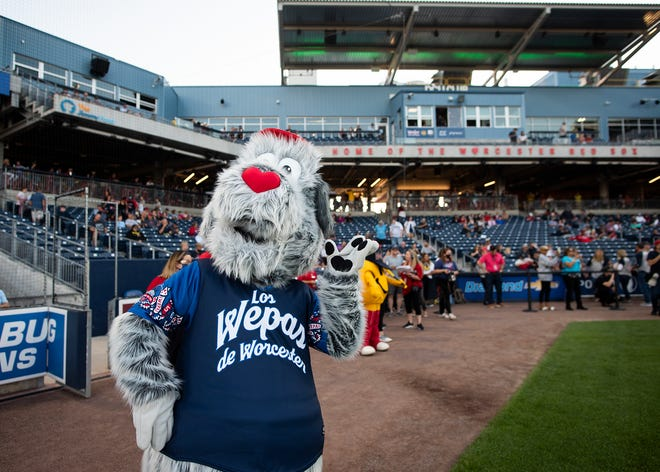 WORCESTER - Woofster, the new mascot of the Worcester Red Sox, made his Polar Park debut Tuesday night.