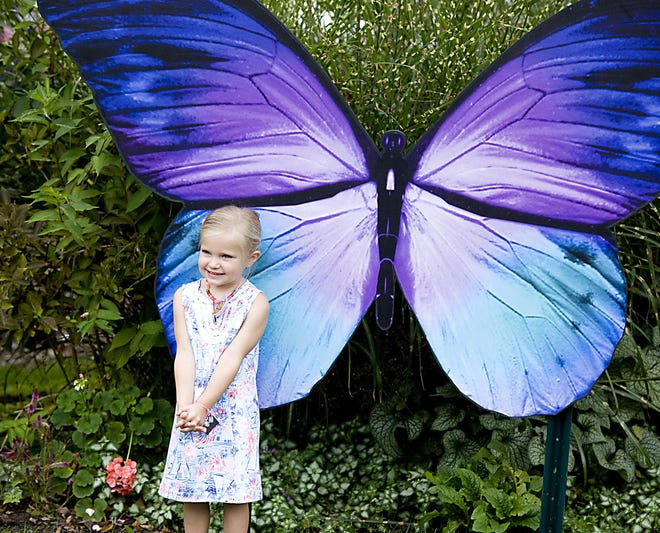 Ailyn Bullen, 3, poses for a photo for her parents in front of a large butterfly during a butterfly release event in September 2019 at Beech Creek Botanical Garden.
