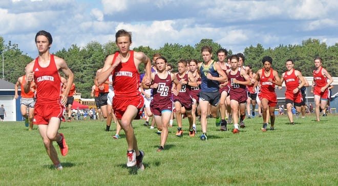 The Coldwater Cardinals finished in third place at the Springport Invite. Pictured in red from left to right are Myron Lafty, John Aerts, Haroon Omar, Ethan Woodcox, James Dewitt.