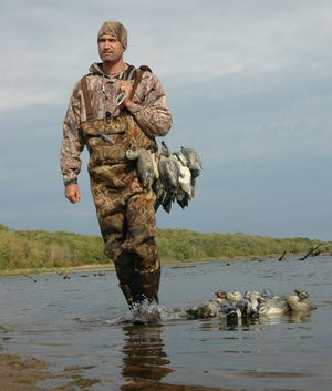 Drought conditions up north in the Duck Factory have blue-winged teal on the move earlier than normal this fall. With the Sept. 11-26 early teal season opening up tomorrow morning and running for the next couple of weeks, prospects are good for Texomaland area waterfowlers hoping for some good early autumn quacker action.