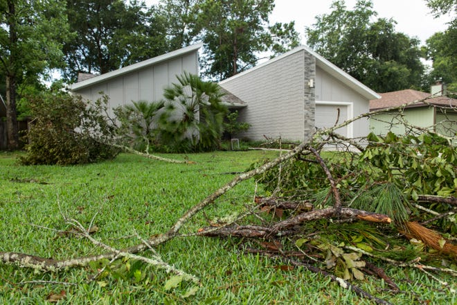 Downed tree limbs and natural yard debris in front of a home after a severe thunderstorm.