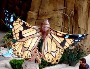 The Kansas Wetlands Education Center's Butterfly Festival, 592 NE K 156 Hwy, Great Bend, will be held from 9 a.m. to 12:30 p.m. Sept. 18.  Pictured: The Painted Lady puppet.