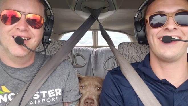 Nigel nestles between volunteer pilots Jared Miller and Jordan McCarthy on his way back to his family in Fayetteville from Maryland after he was stolen from his home Aug. 28.