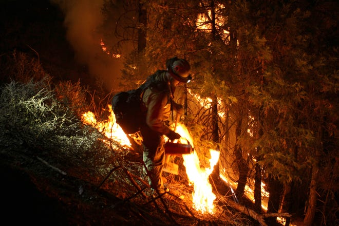 A firefighter working the Monument Fire in Trinity County does a back burn along Oak Ridge Road on Thursday, Sept. 9, 2021, to stop the fire on the ridge before it spreads into Hayfork.