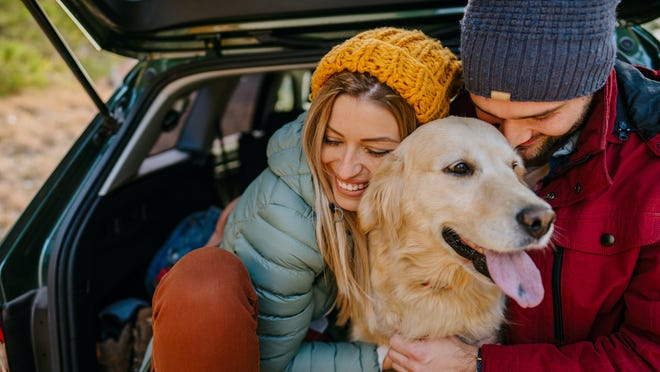 Shop end-of-summer deals for the whole family, including your fur baby.