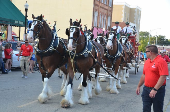 The world famous Clydesdales make a stop in Canton Thursday.