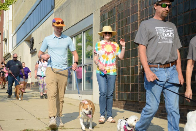 Chris Brown, deputy law director for the city of Mansfield, walks Bella down North Park Street during Sunday's Strutt Your Mutt event.