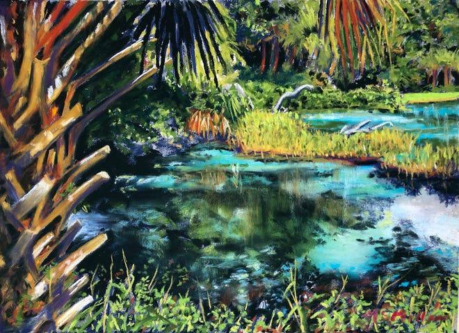 Dawn McMillan, Rainbow Springs #2, pastel.