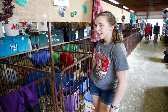 Lillianna Plessinger talks with the reporter as she stocks her lamb pen at the Wayne County Fair on Monday, Sept. 13, 2021. TOM E. PUSKAR/TIMES-GAZETTE.COM