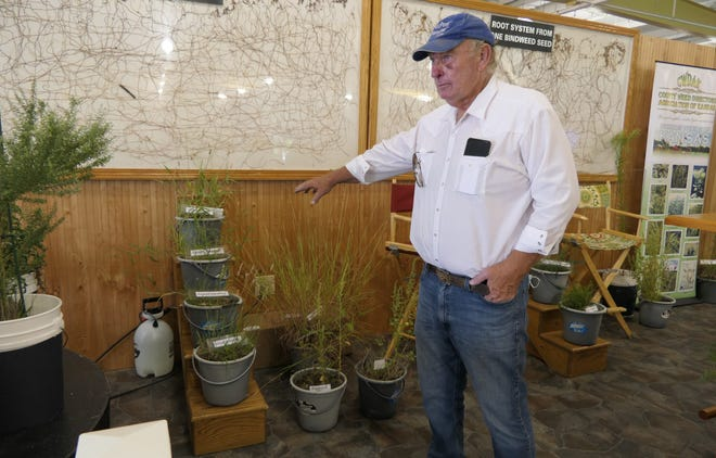 John Wimer, a noxious weed specialist in Kingman County, talks about noxious weeds Saturday at the Kansas State Fair. Behind him is pictured the root system from one bindweed seed.