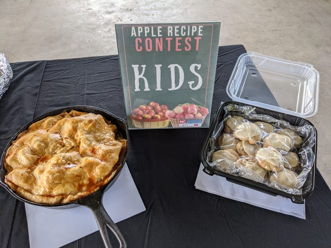 Winning entries, including the grand prize winner by Gus McCall, in the Kids category of the annual Apple Recipe Contest during the 75th N.C. Apple Festival in downtown Hendersonville.