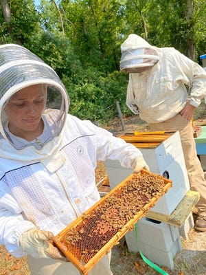 Alexis Pierson shows a slab from one of Onslow County Beekeeper Association's active hives.