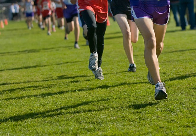 Owen Valley cross country had a phenomenal performance at Saturday's Eagle Classic.