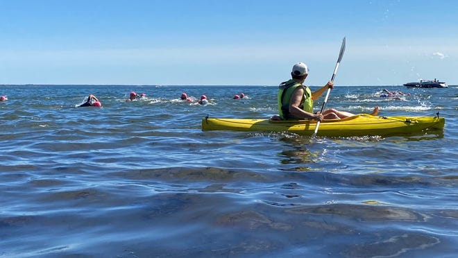 """Swim For Life swimmers headed west Saturday along the Provincetown shoreline. The annual 1.2-mile fundraiser drew 171 swimmers to the harbor, 39 to Great Pond in Wellfleet, and 33 """"swimming in place"""" around the country, swim co-founder Jay Critchley said."""