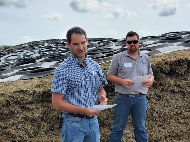 Nutritionist Jake Sehr (left) and Brody Stapel, farm owner, share with field day attendees how growing and feeding higher-fiber digestibility crops improve animal performance during a gathering Aug. 31 at Stapel's farm in Cedar Grove.