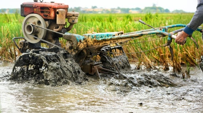 In a new study, researchers showed that the food system generates about 35% of total global man-made greenhouse gas emissions. (Above: Farmer tilling his rice field in Vietnam.