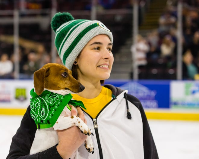 The annual wiener dog races will be part of the show again at Peoria Rivermen games in 2021-22.
