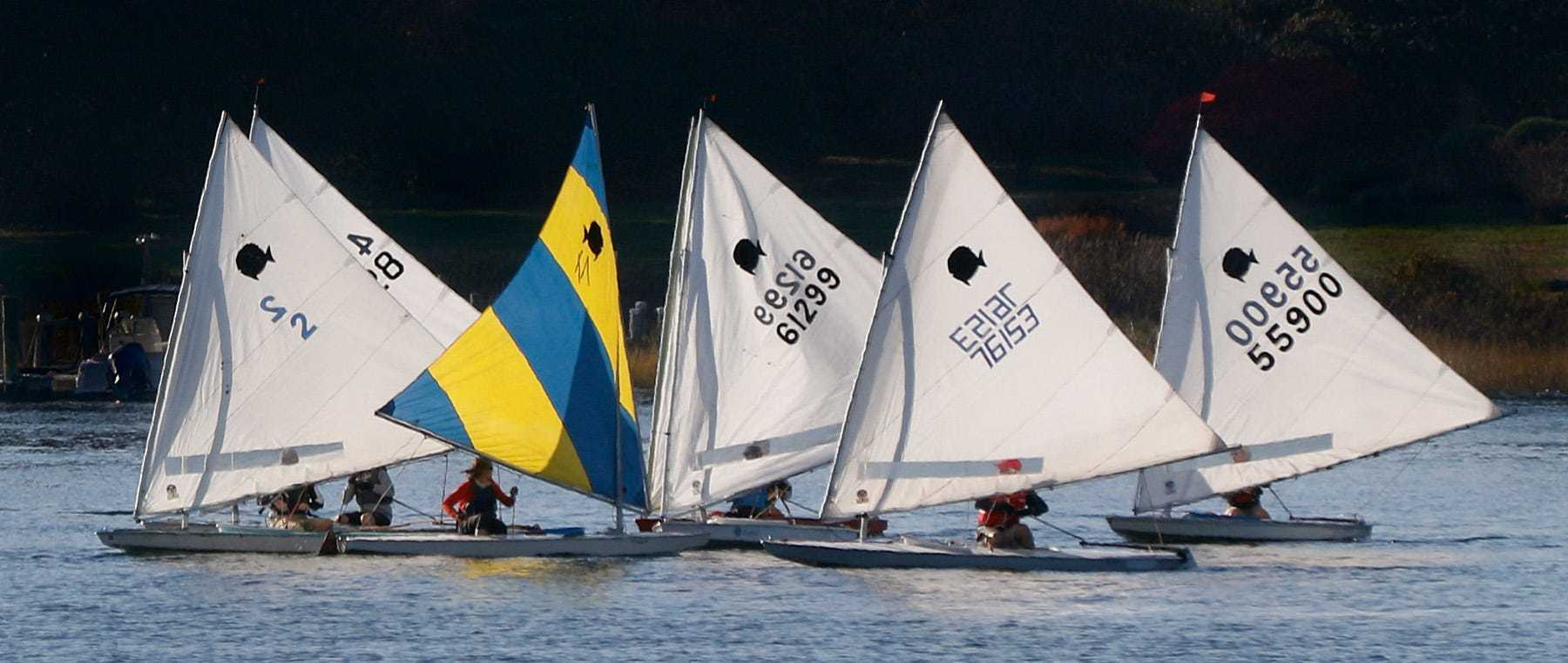 A small sunfish regatta under sail in the waters off Warren Town Beach on a Sunday afternoon. afternoon.