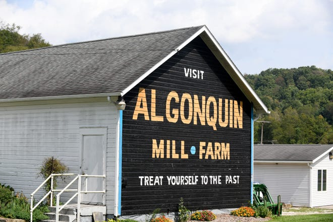 The Algonquin Mill Festival is celebrating its 50th anniversary this year. The event runs Oct. 8-10 in Carroll County.