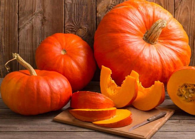 It's the season for pumpkins.