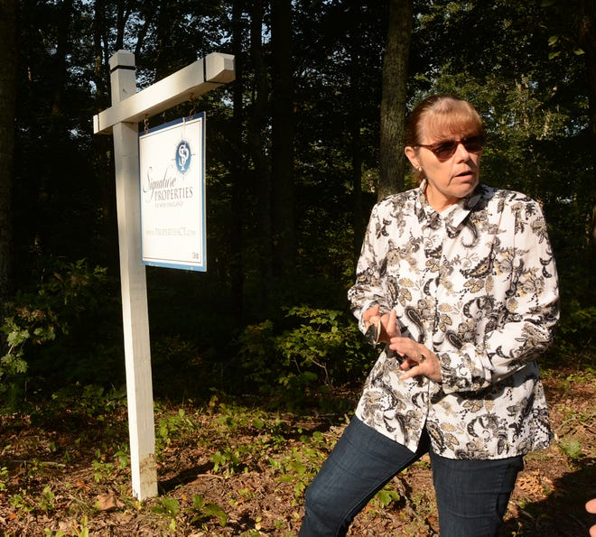 Plainfield Town Planner Mary Ann Chinatti talks about 161 acres of land off Kate Downing Road for future open space and passive recreation Tuesday.