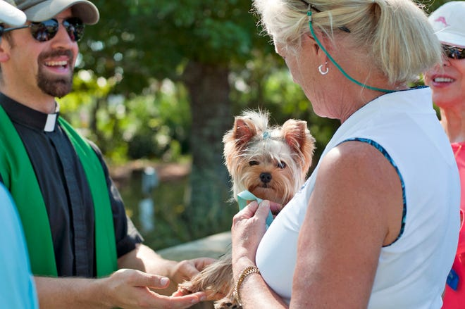 Blessing of the Animals at Immanuel Anglican Church In Destin will be Oct. 2.
