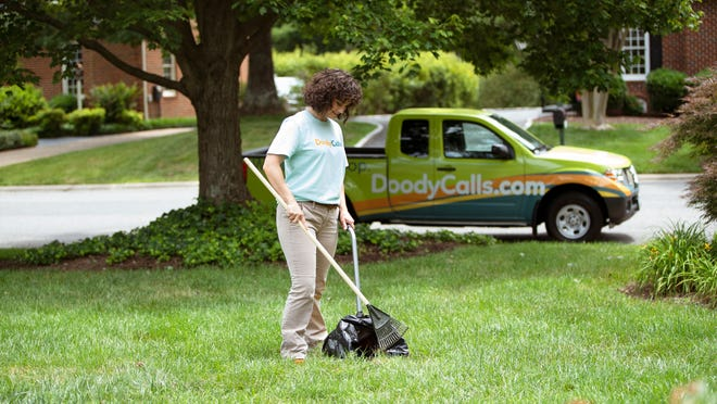 A DoodyCalls employee removes dog waste from a pet owner's yard. DoodyCalls of Cedarburg opened Sept. 1.