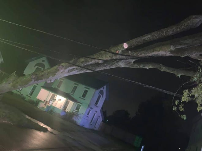 This tree on Main St. in Dundee was felled by a storm Tuesday night.