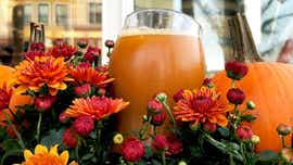 Pumpkin beer season is here, so try these Monmouth County craft beers