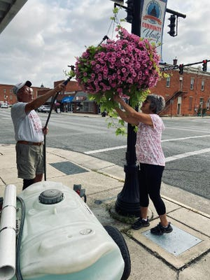 Peter Maynard waters a hanging basket on Sandusky Avenue earlier this season while Susan works on pruning the foliage.