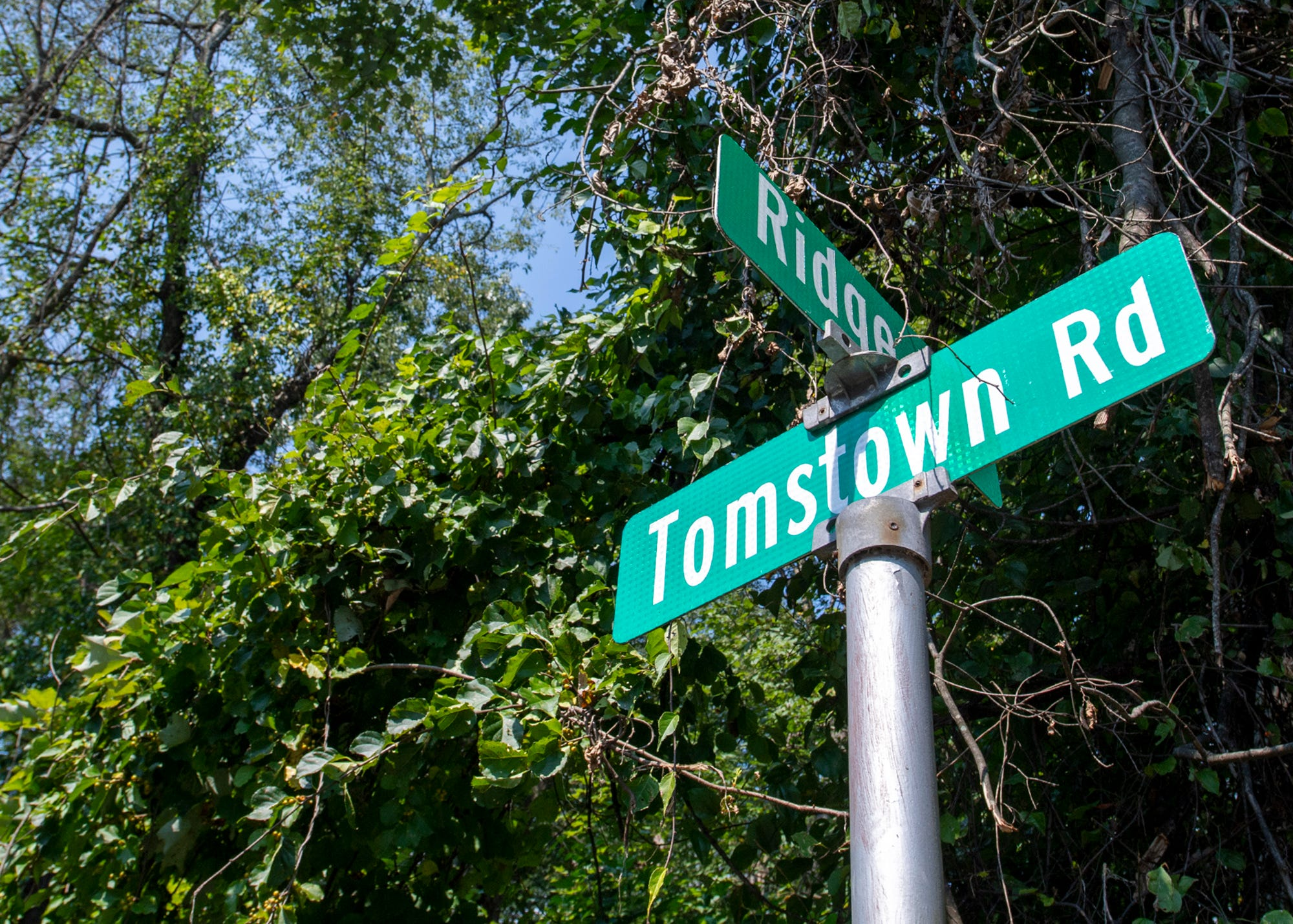 The intersection of Moonshine (Route 443) Ridge and Tomstown Road is near where the unidentified girl was found in 1973.