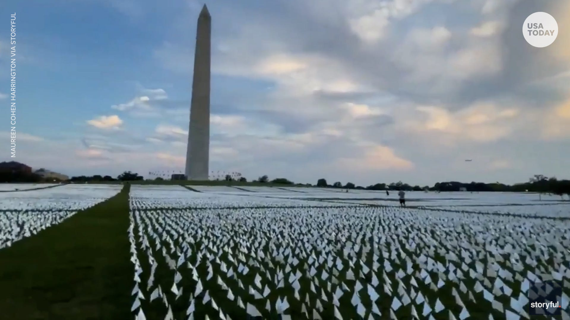 National Mall covered in 660,000 white flags representing COVID deaths in the US